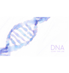 ultra thin line shallow dna double helix colorful vector image