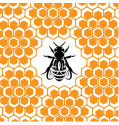 Background with honeycomb and bee vector