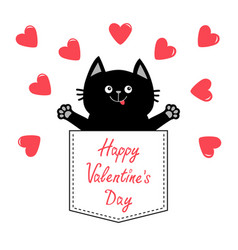 happy valentines day cat in pink pocket red heart vector image