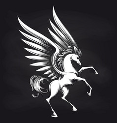 pegasus on chalkboard design vector image