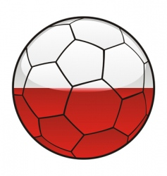 poland flag on soccer ball vector image