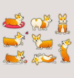 set of cute dogs breed welsh corgi pembroke on vector image