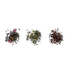 Tea heaps top view assortment dry leaves set vector
