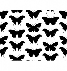 Vector butterfly pattern vector