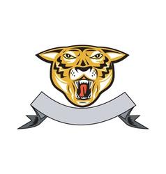 Tiger Head Growl Head Isolated vector image