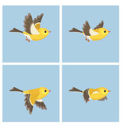 Flying american goldfinch fem animation sprite vector