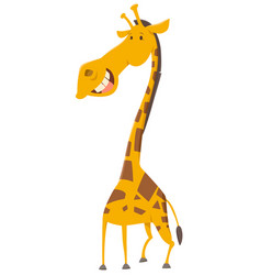 Giraffe cartoon animal character vector