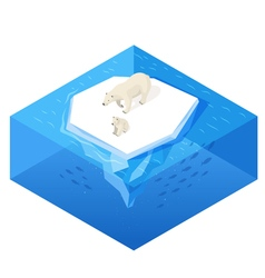 Isometric 3d of white bear vector image