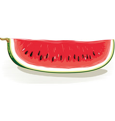 Slice of watermelon on a white background vector