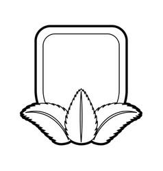 Tea leafs product emblem vector