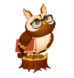 Wise owl with a book stands on a stump isolated vector