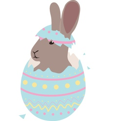 Cute Easter baby bunny hatched from one egg vector image vector image