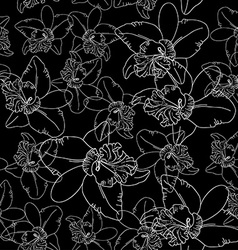 White orchid flowers on black background seamless vector image