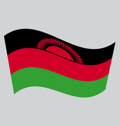flag of malawi waving on gray background vector image