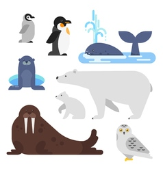 flat style set of arctic animal vector image