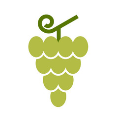 grapes icon vector image