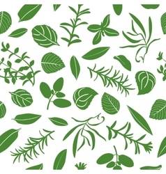 Herbes de provence seamless pattern set vector