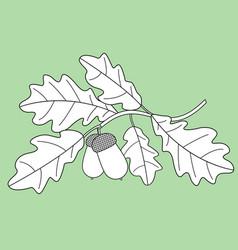oak contour branch vector image