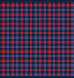 red and blue checkered plaid pattern vector image
