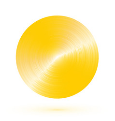 round brushed gold with reflections vector image