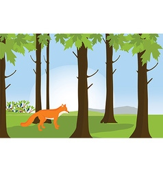 Red fox in forest landscape vector image vector image