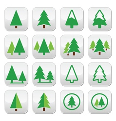 Pine tree park green icons set vector image