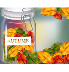 autumn leaves in a jar on blurry background vector image