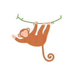 cute baby monkey hanging on tree branch swinging vector image