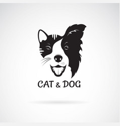 Dog face border collie and cat face on a white vector