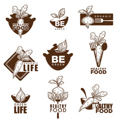 healthy organic vegetarian or vegan food icons vector image