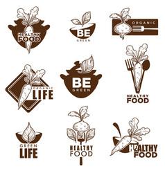 Healthy organic vegetarian or vegan food icons vector