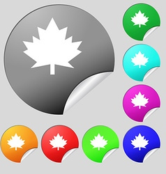 Maple leaf icon Set of eight multi colored round vector image