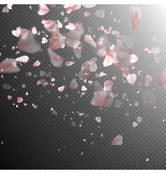Pink sakura falling petals EPS 10 vector