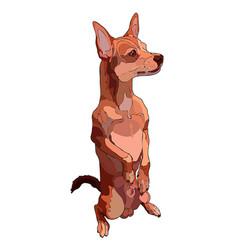 Sitiing dog vector