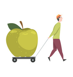 Tiny male in hat pulling huge juicy apple on vector
