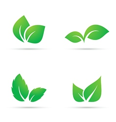 Green leaf icons vector image vector image