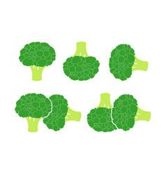 Broccoli cabbage vector