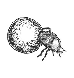 Dor bug beetle engraving vector