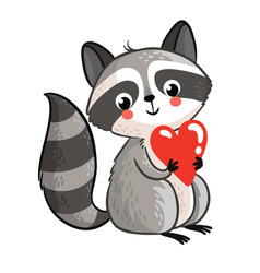isolated raccoon holding in the hands of the heart vector image