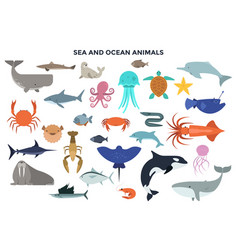 set water and ocean animals vector image