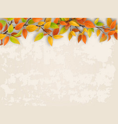 tree branch on old plastered wall background vector image
