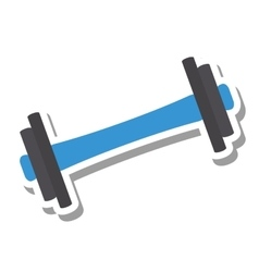 Weight equipment gym isolated icon vector