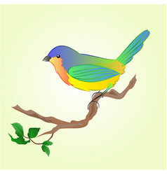 bird on branch spring background vector image