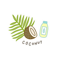 coconut superfood isolated on white vector image