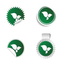 sticker green color with white leaf icon vector image vector image