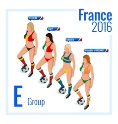European football championship in France Group E vector image