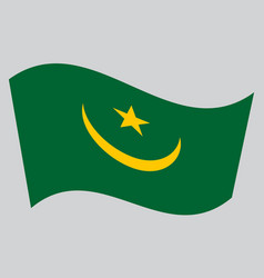 Flag of mauritania waving on gray background vector