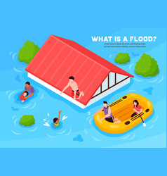 Flood vector