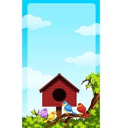 Little birds and bird house vector image