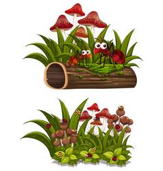 mushroom and bugs on the log vector image